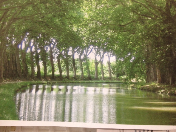 Canal du Midi from our boat.